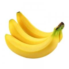 海南香蕉450g-500g/份YT