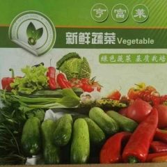 新鲜有机蔬菜 6斤