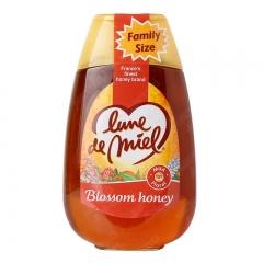 蜜月原味蜂蜜500G[61372]
