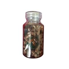 权健破壁灵芝孢子粉胶囊0.25克/粒*100粒/瓶*6瓶
