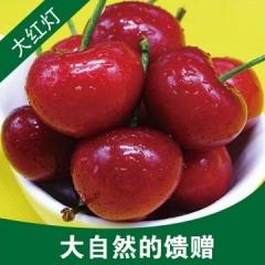 现摘新鲜水果烟台大樱桃红灯 2.5kg装 包邮 本地
