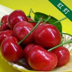 现摘新鲜水果烟台大樱桃红灯  3斤装