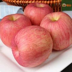 山东烟台红富士苹果新鲜水果    十斤装包邮