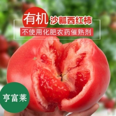 亨富莱有机西红柿