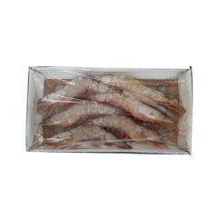 东方海洋-对虾  6头/500 6头