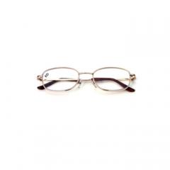 眼镜式助视器6535/6D