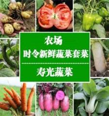 4公斤蔬菜组合(娃娃菜、杏鲍菇、黄瓜、西红柿、尖椒、胡萝卜、山芹、甘蓝 )