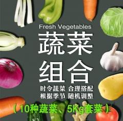 5公斤蔬菜组合(娃娃菜、杏鲍菇、黄瓜、西红柿、尖椒、胡萝卜、山芹、甘蓝、金针菇 、西葫芦)