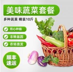 精装蔬菜10斤(黄瓜2斤,西红柿2斤,彩椒2斤,尖椒2斤,香菇1斤,香菜1斤)