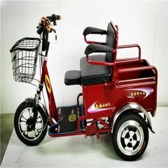 电动三轮车迷你型中老年接送孩子逛市场买菜串门访友休闲代步车可进电梯 辆
